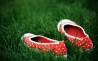 Обувь в траве