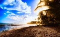 Море, пляж и пальмы
