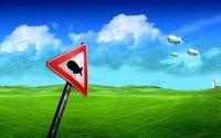 Аэростаты над полем