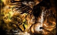 Образ девушки с крыльями