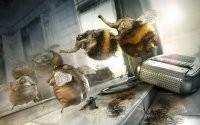 Фантастические насекомые