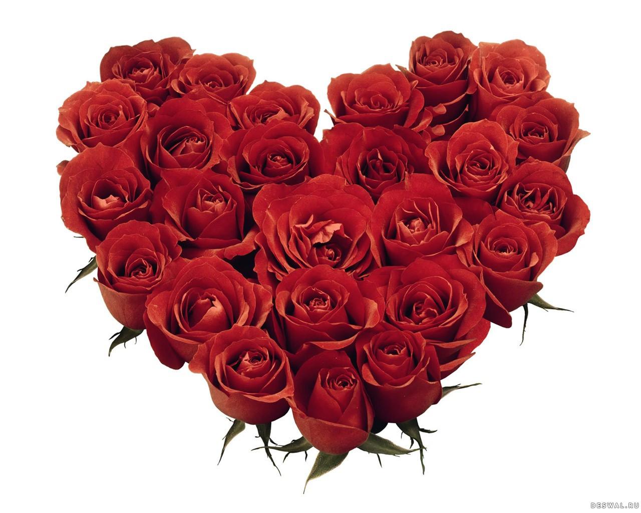 Фото 30. Нажмите на картинку с романтическими обоями - любовь, чтобы просмотреть ее в реальном размере