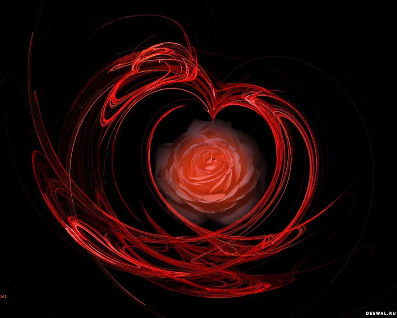 Фото 54. Нажмите на картинку с романтическими обоями - любовь, чтобы просмотреть ее в реальном размере