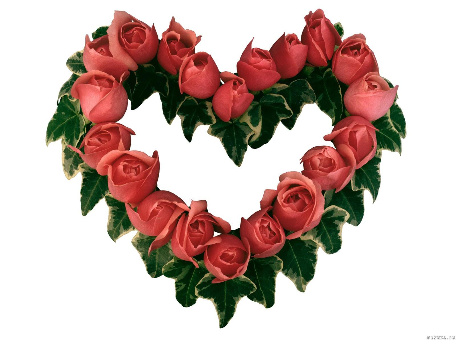Фото 26. Нажмите на картинку с романтическими обоями - любовь, чтобы просмотреть ее в реальном размере