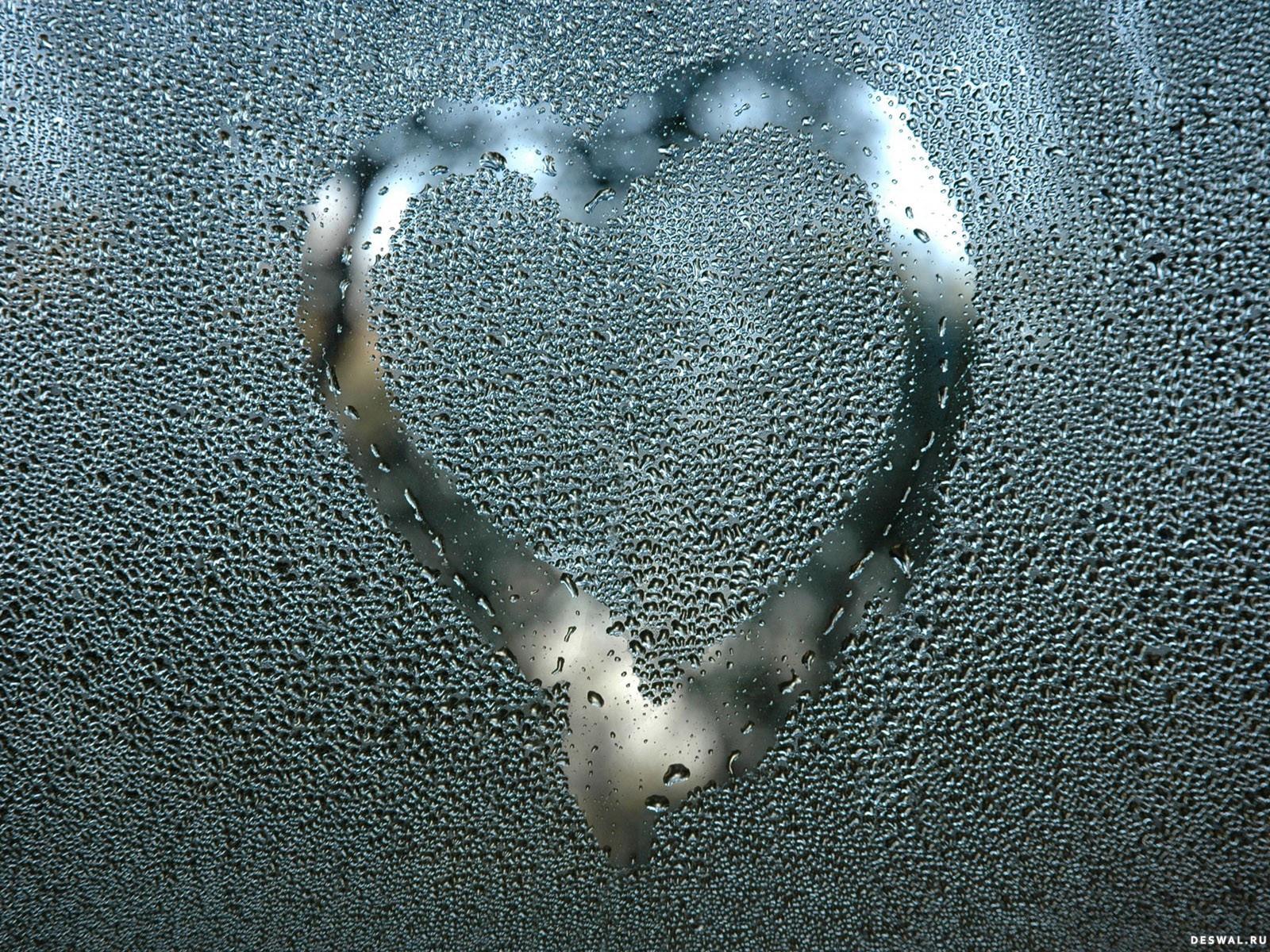 Фото 34. Нажмите на картинку с романтическими обоями - любовь, чтобы просмотреть ее в реальном размере