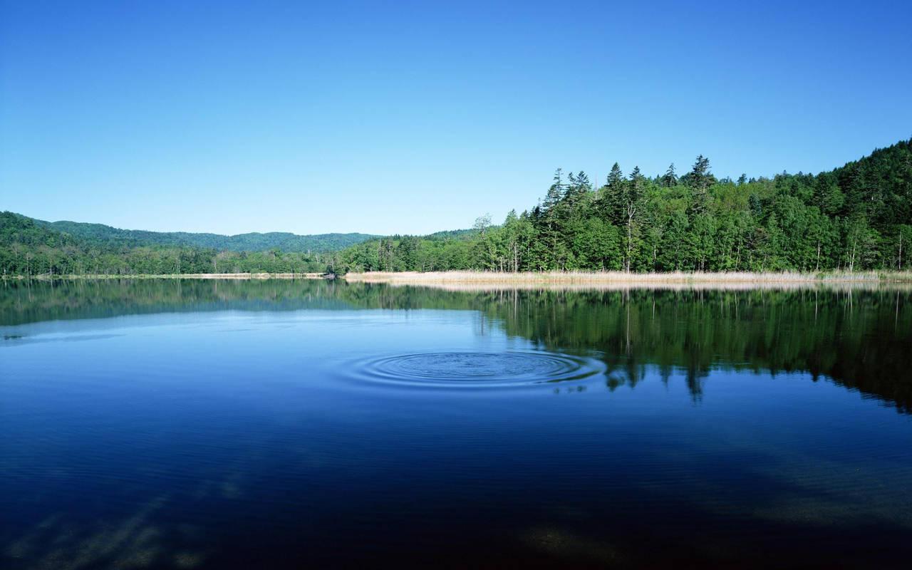 Круги на воде нажмите на картинку с