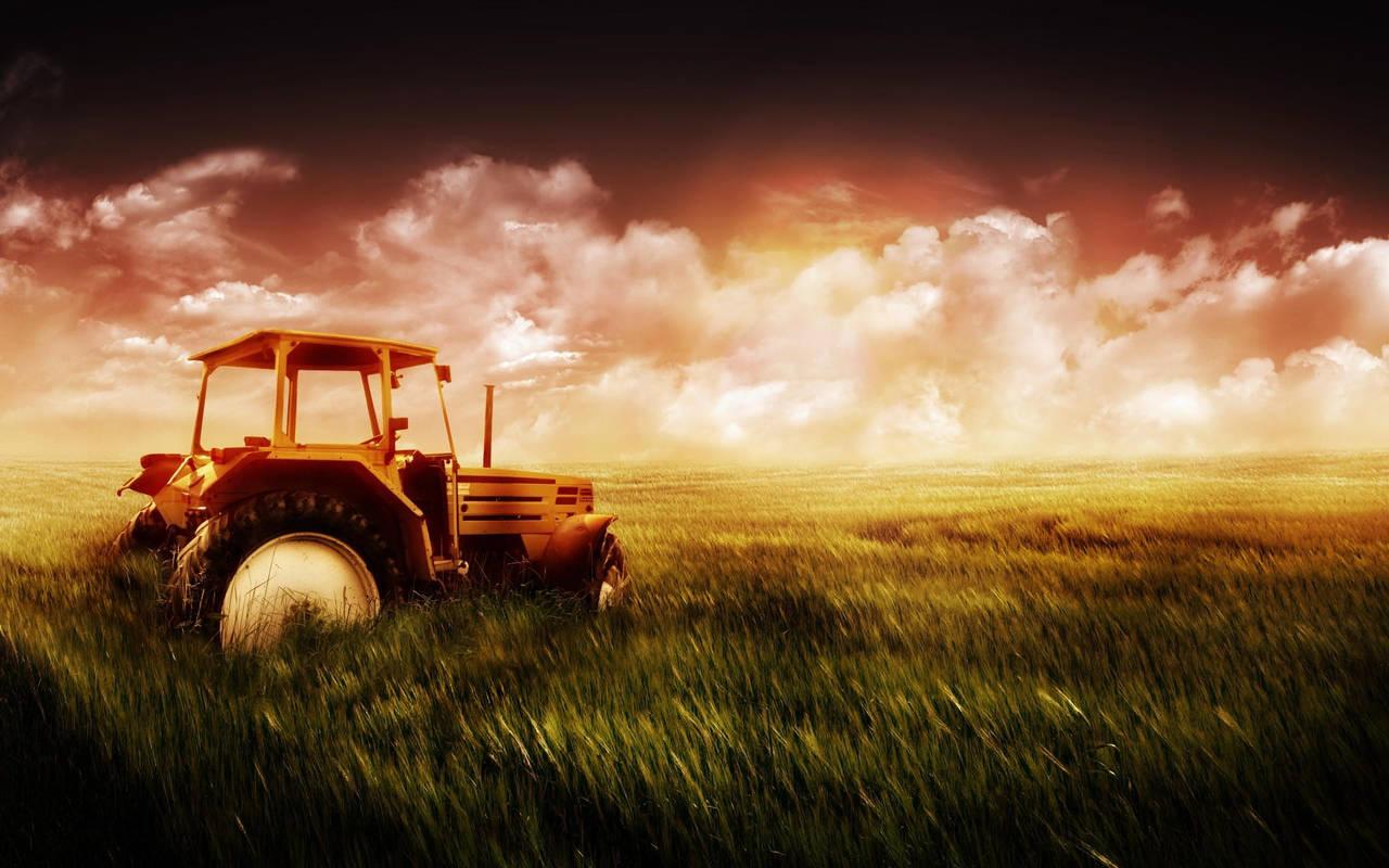 Трактор в поле нажмите на картинку с