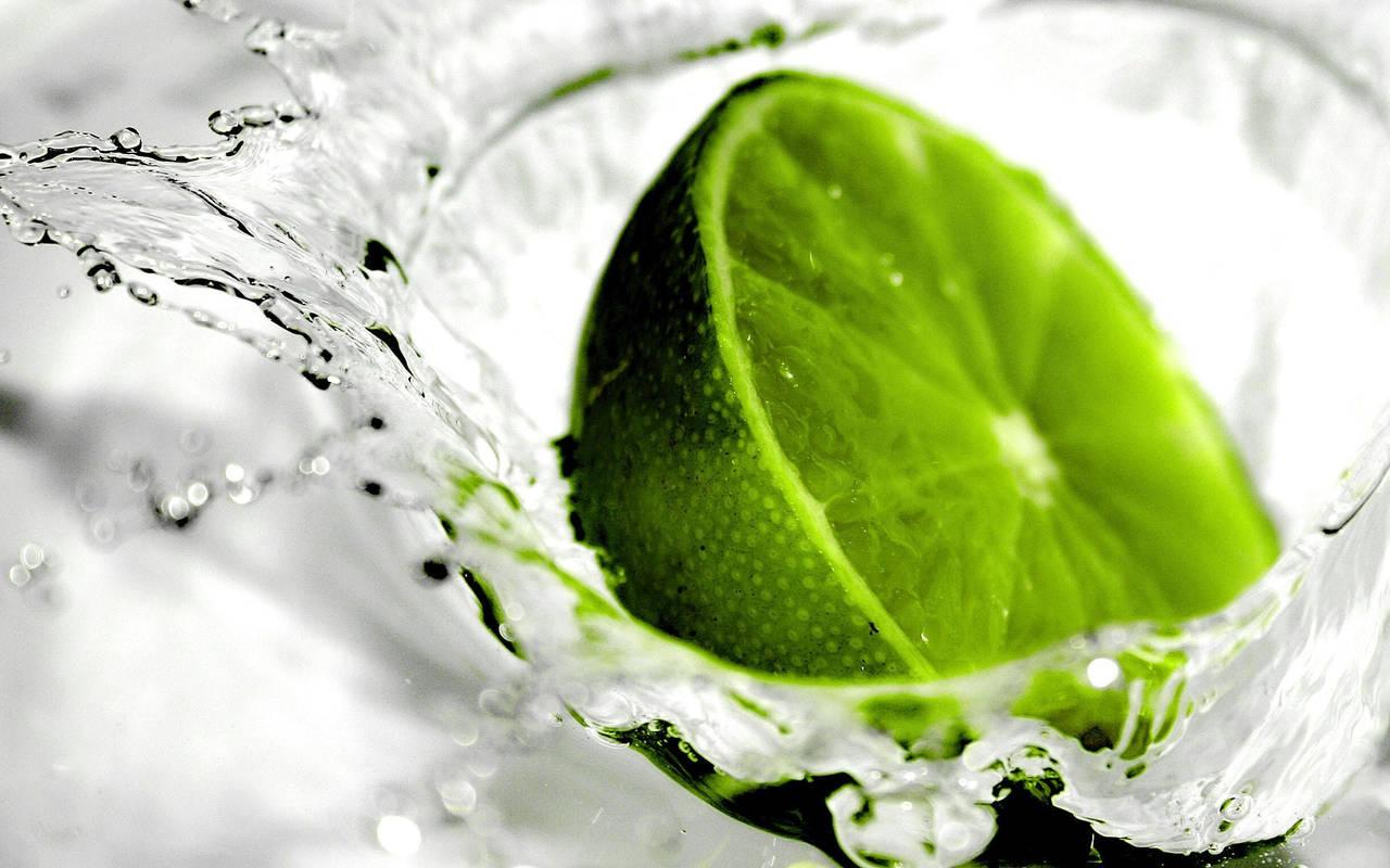 зеленые фотообои:
