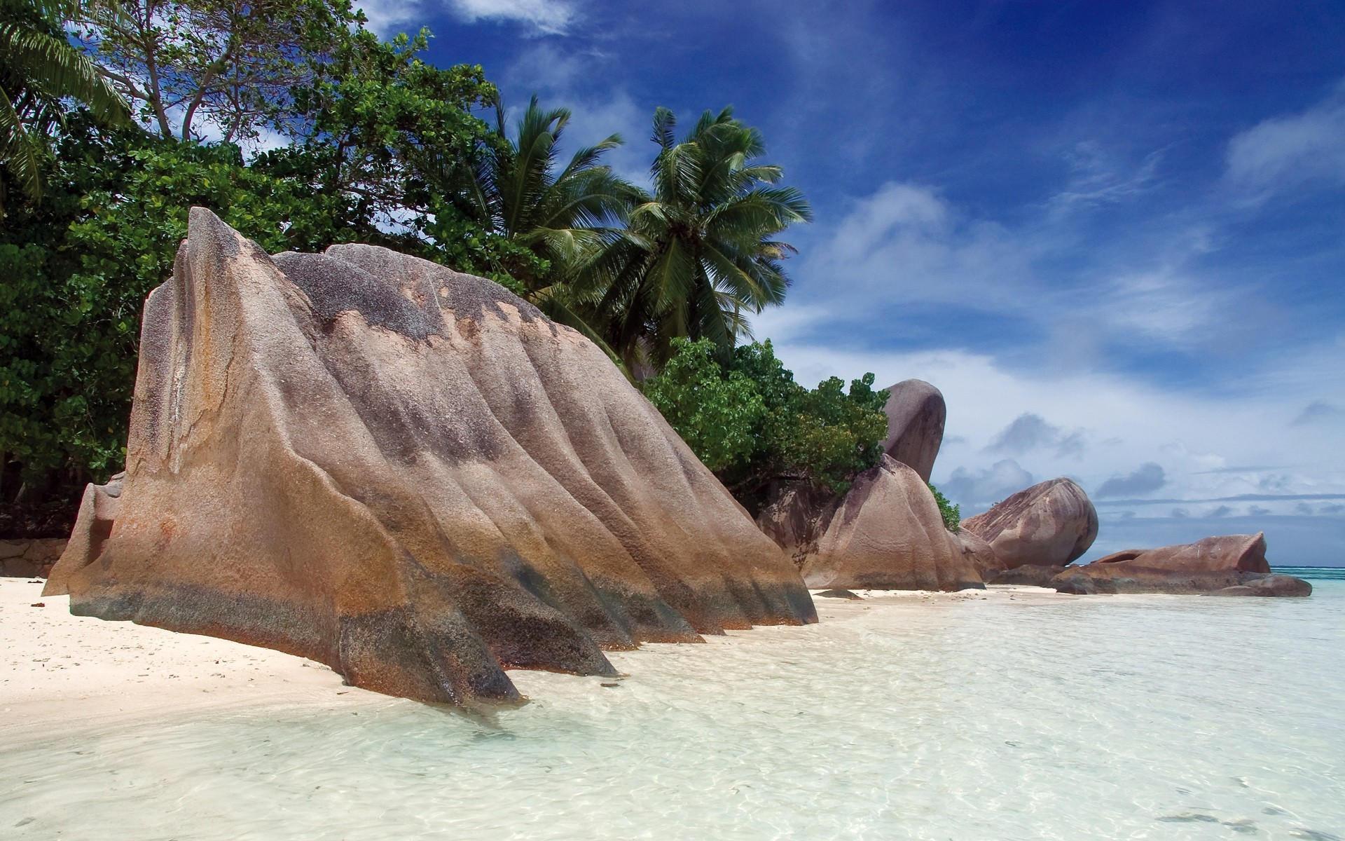 Тропические места