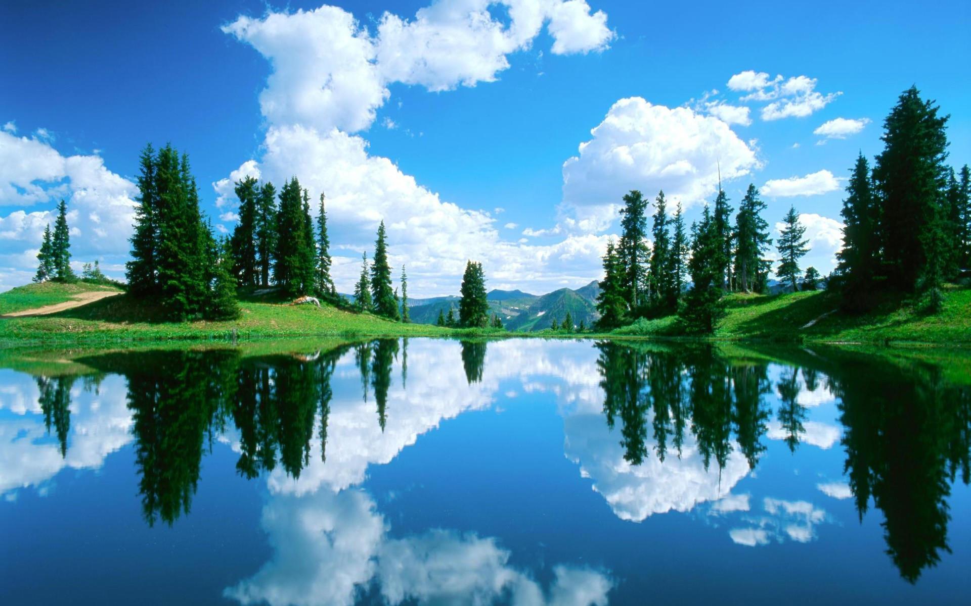 зеркальное фото отражение