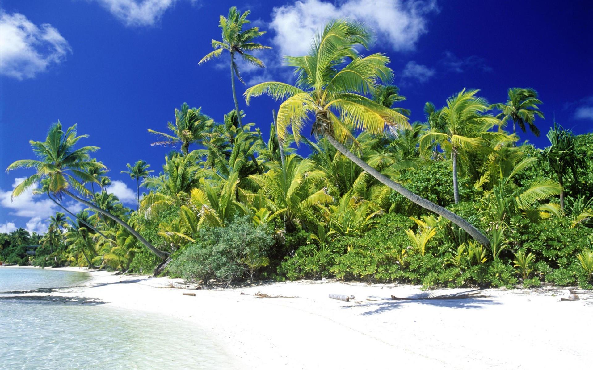 Тропический пляж острова